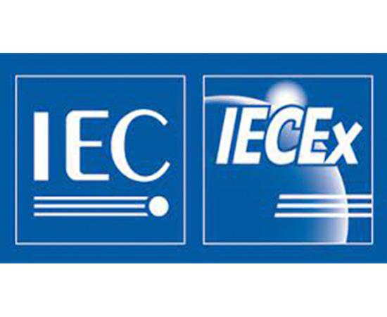 IECEx Enclosure